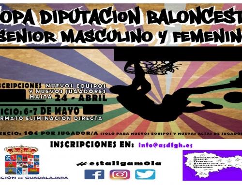 Copa Diputación Baloncesto 2017